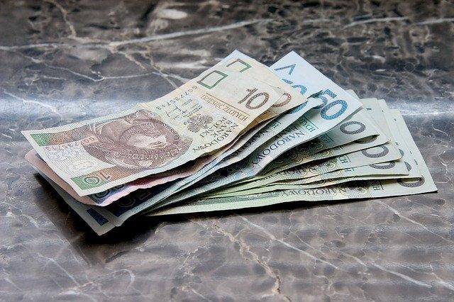 pieniądze polskie złote PLN